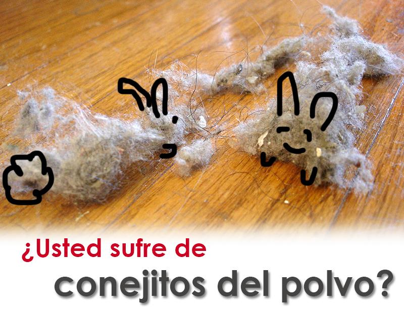 ¿Usted sufre de conejitos del polvo?
